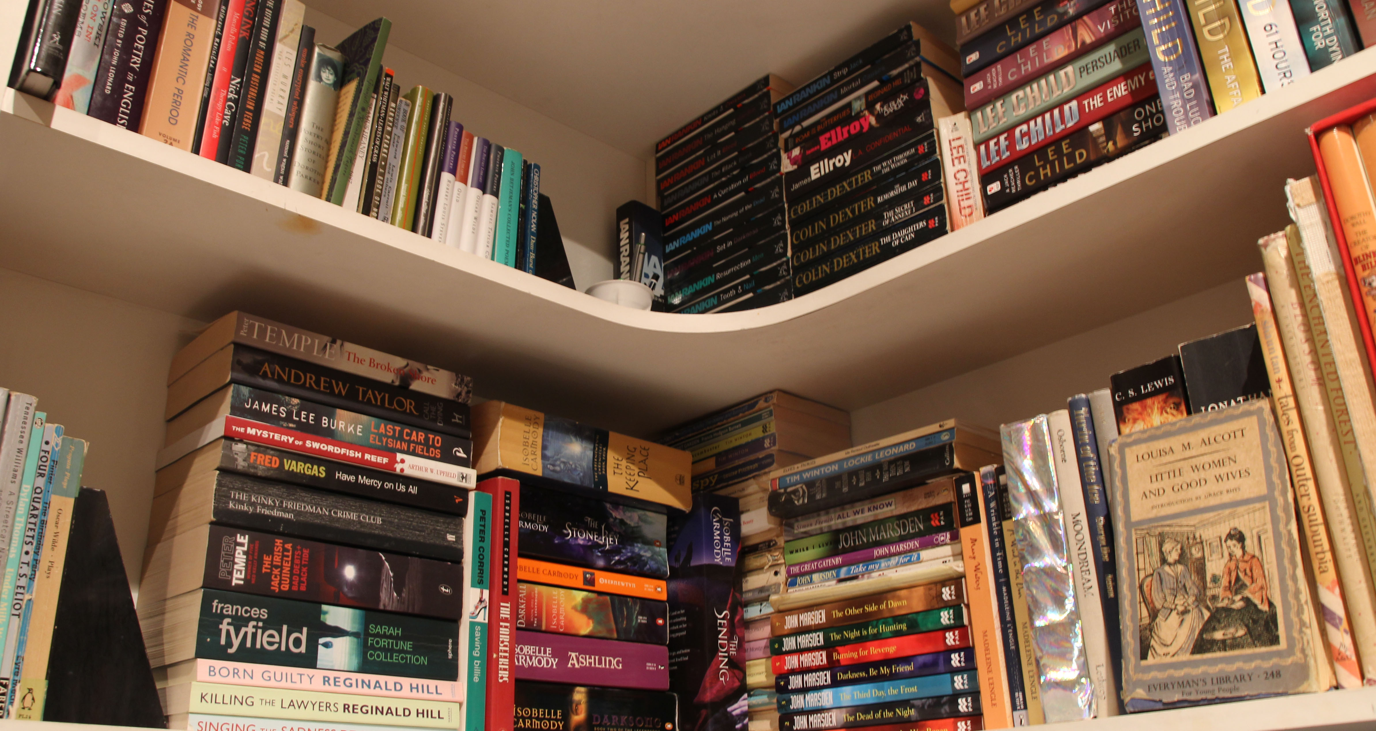 Space Is For Filling With More Books