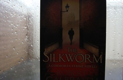 The Silkworm: rainy-day fiction.