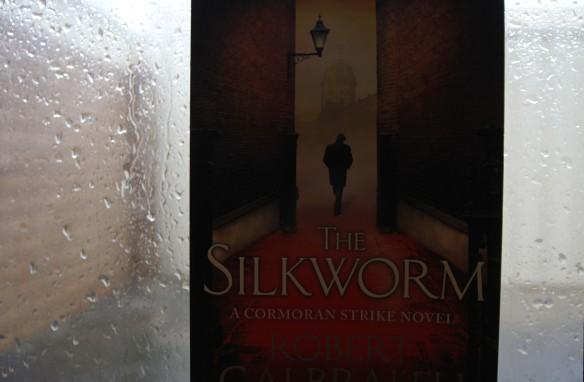 The Silkworm: rainy-day fiction.